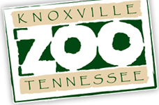 Zooknoxville Promo Code